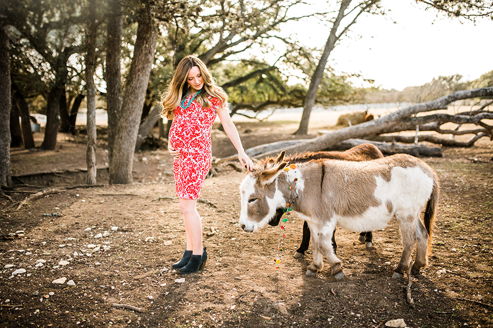 expectant mom petting donkey in texas hill country