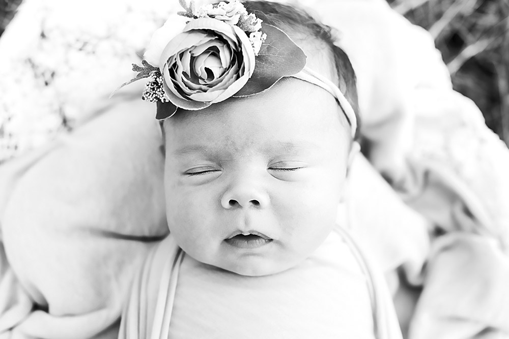 newborn baby with flower headband in san antonio texas